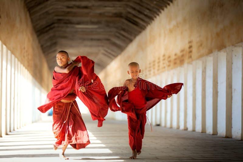 De boeddhismebeginners lopen met umberella in tempel stock foto
