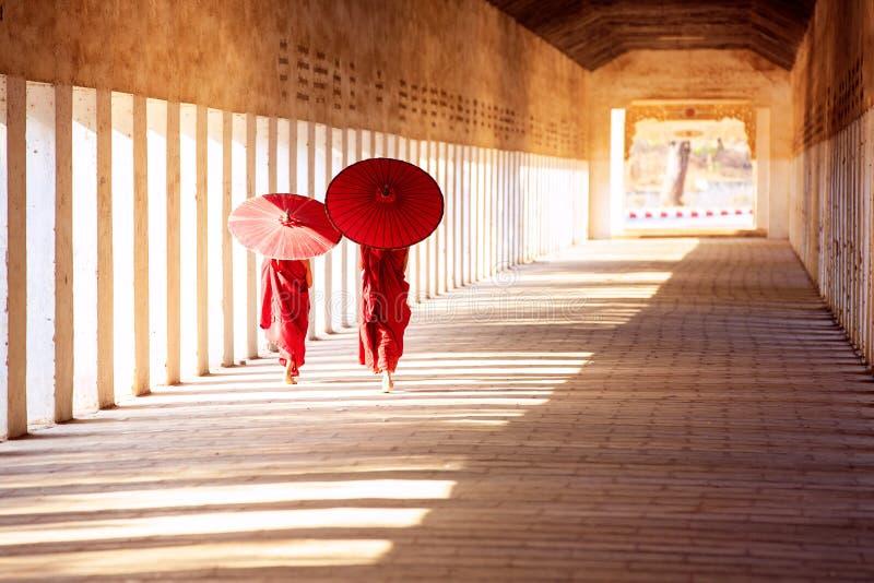 De boeddhismebeginners lopen met umberella in tempel stock afbeelding