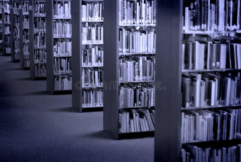 De Boeken van de bibliotheek stock afbeelding