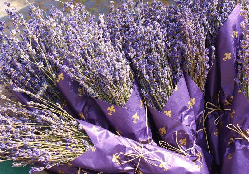 De boeketten van de lavendel stock afbeeldingen