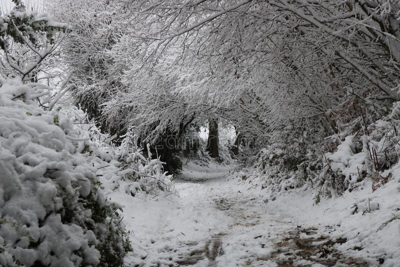 De Bogen van de sneeuwwinter in Wels Landschap royalty-vrije stock afbeeldingen