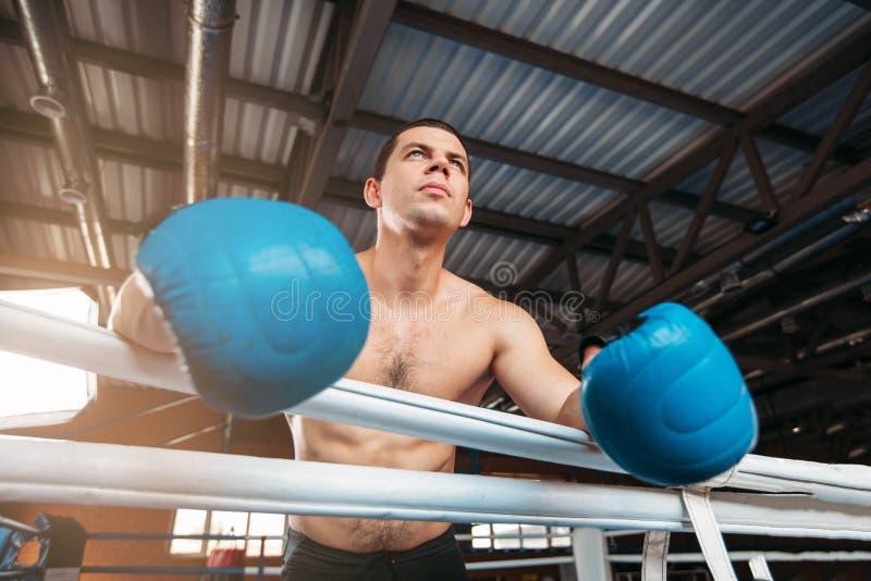 De bokser in blauwe handschoenen houdt op de kabels royalty-vrije stock afbeeldingen