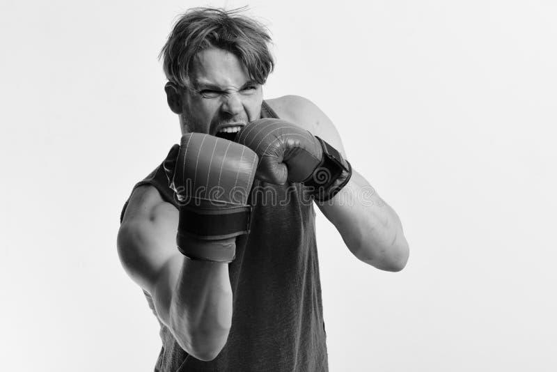 De bokser maakt klappen en stempels zoals opleidend Kampioenschap en opleidingsconcept Mens met varkenshaar en woedend gezicht stock afbeelding