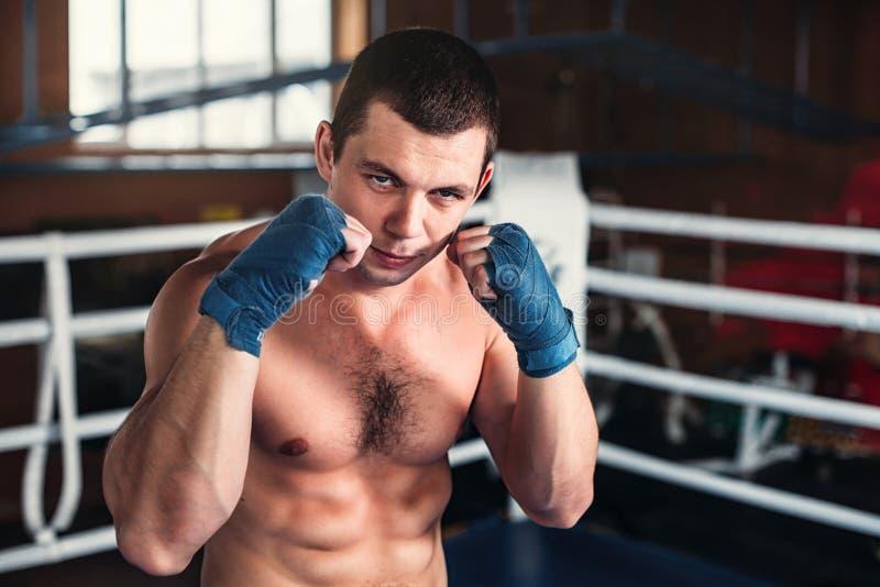 De bokser nam de tribune royalty-vrije stock afbeelding