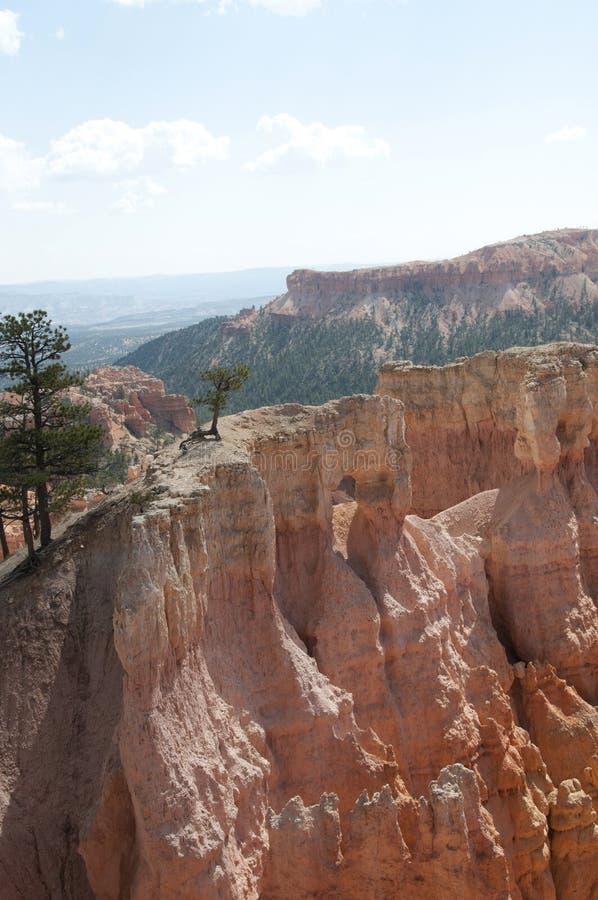 De Bomen in Bryce Canyon Hoodoos Desert Landscape royalty-vrije stock afbeelding