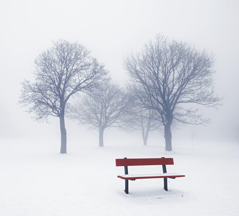 De bomen en de bank van de winter in mist stock afbeelding