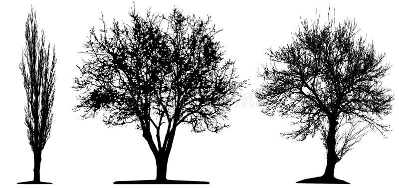 De bomen isoleted royalty-vrije illustratie