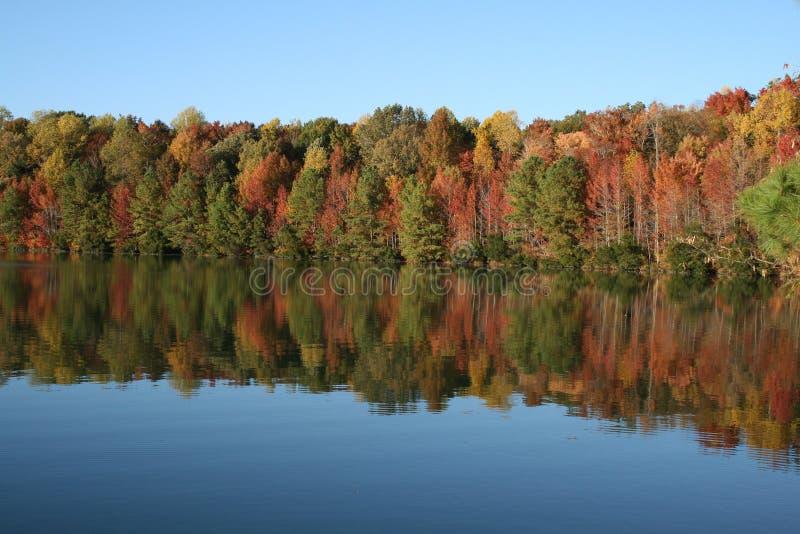 De Bomen van de herfst die in blauw meer in Daling worden weerspiegeld royalty-vrije stock fotografie