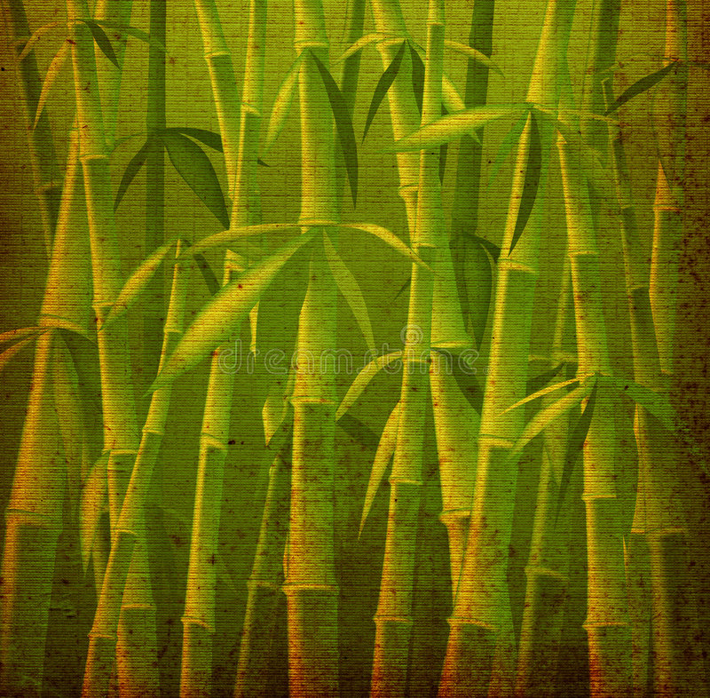 De bomen van het bamboe stock illustratie