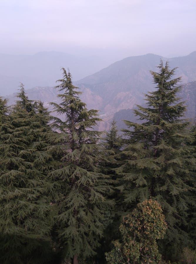 De bomen van het Geenmilieu met mooi Bergenlandschap met Wolken royalty-vrije stock afbeelding