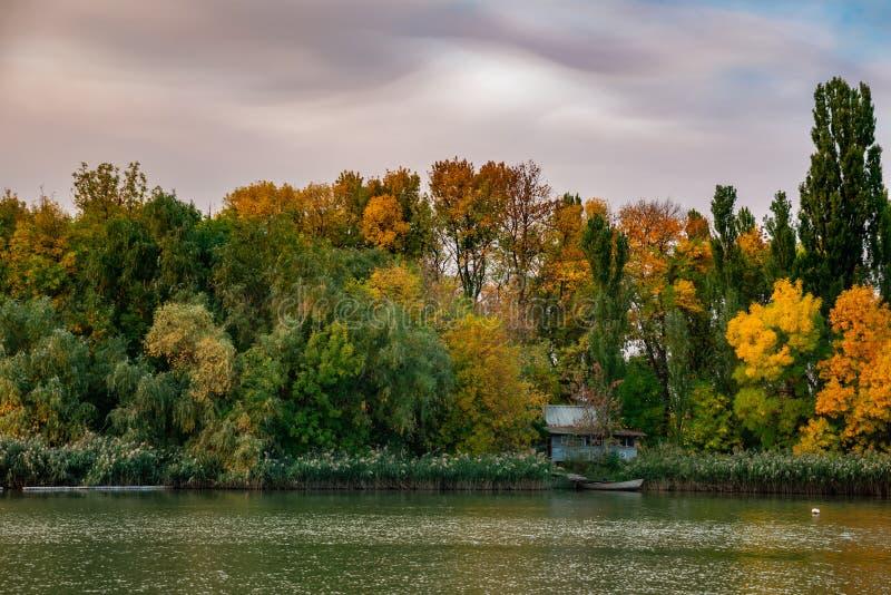De bomen van het de herfstlandschap met gele bladeren langs de rivier en bezinningen in het water stock foto's