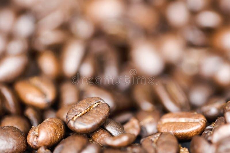 De bonen van de close-upkoffie met vage achtergrond stock foto