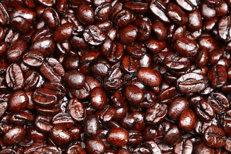 De bonen van de achtergrond koffie textuur royalty-vrije stock foto