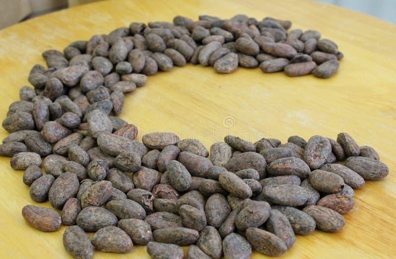 De Bonen van de cacao stock afbeeldingen