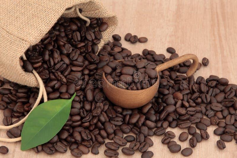 Download De Bonen van de koffie stock afbeelding. Afbeelding bestaande uit blad - 29509561