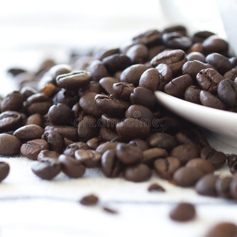 Download De bonen van de koffie stock foto. Afbeelding bestaande uit landbouw - 29514200
