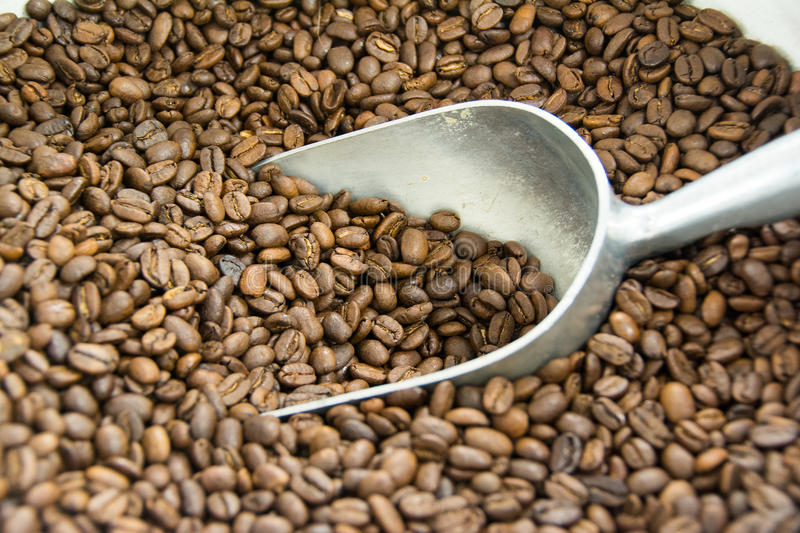 De bonen van de koffie stock foto's