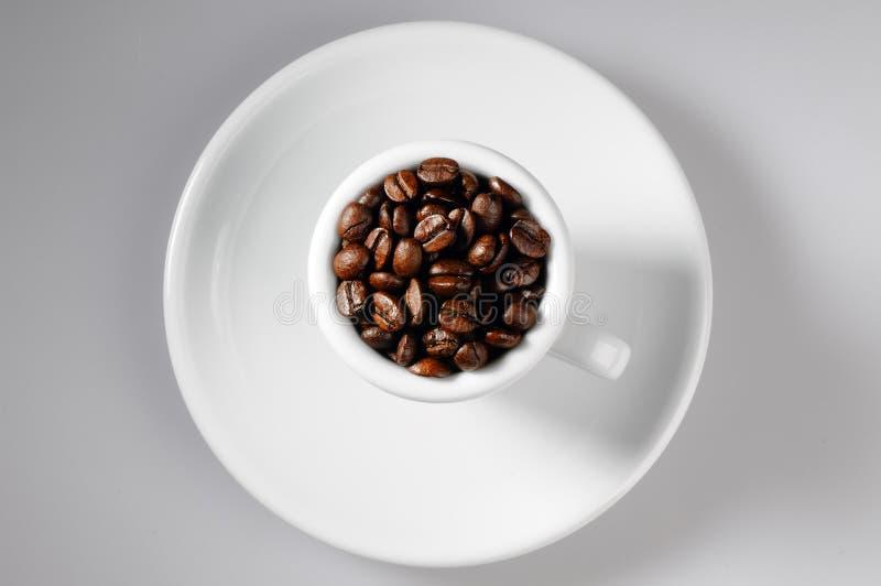 De bonen van de koffie binnen met kop royalty-vrije stock fotografie