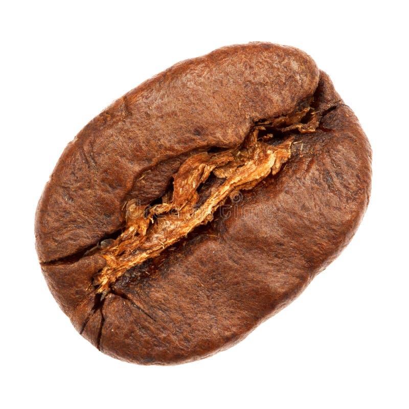 De Bonen van de koffie die op witte achtergrond worden geïsoleerde stock foto's