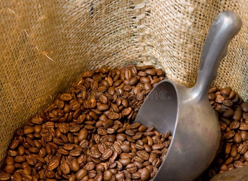 De bonen van de koffie in een open jute royalty-vrije stock foto's