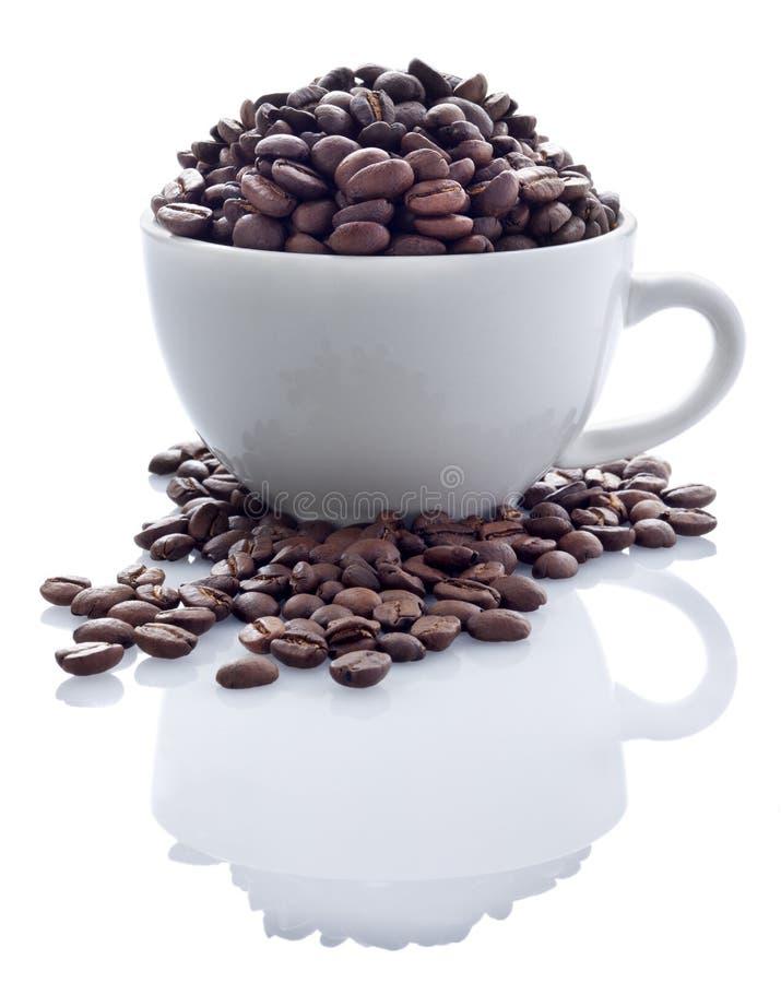 De Bonen van de koffie in Kop stock afbeeldingen