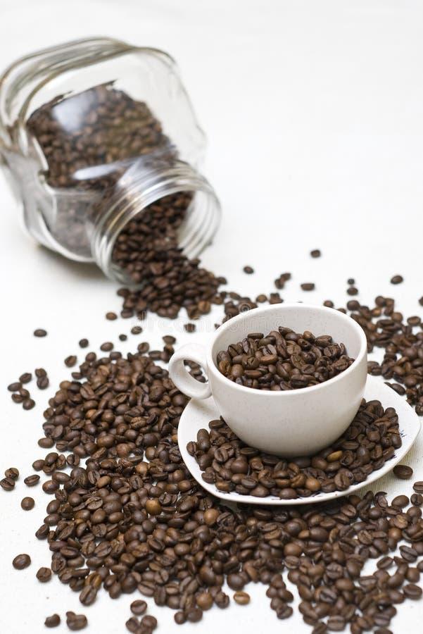 De bonen van de koffie in kop stock foto