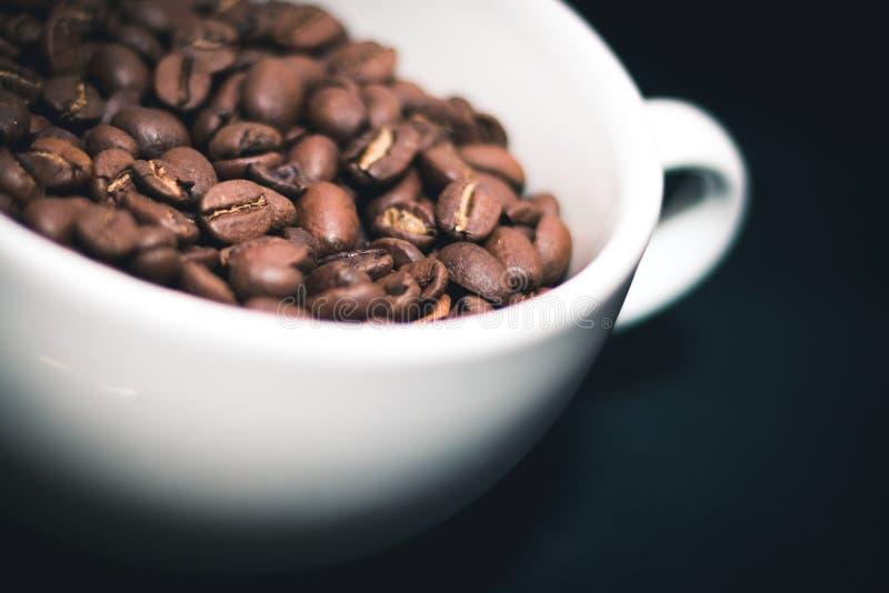 De bonen van de koffie in witte kop royalty-vrije stock foto
