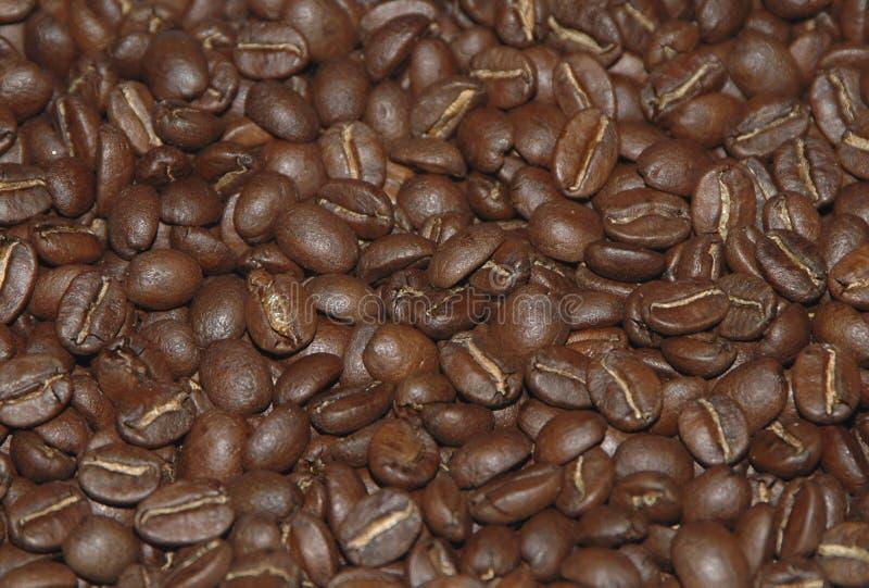 DE BONEN VAN HET BRAADSTUK COFFE stock foto
