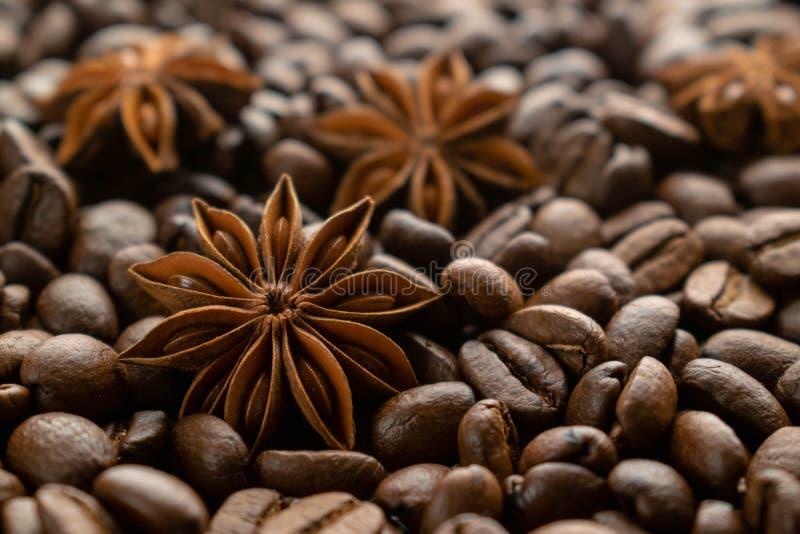 De bonen van de koffie en steranijsplant royalty-vrije stock afbeelding