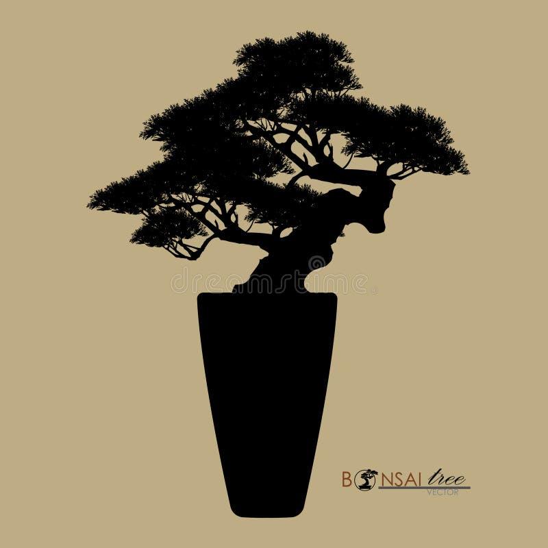 De bonsaiboom, silhouet van bonsai, detailleerde beeld, Vectorillustratie, royalty-vrije illustratie
