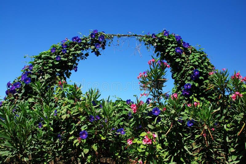 De boog van de tuin stock fotografie