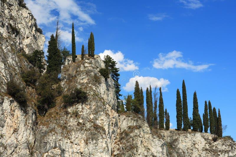De boom en de hemel van het landschap stock afbeeldingen