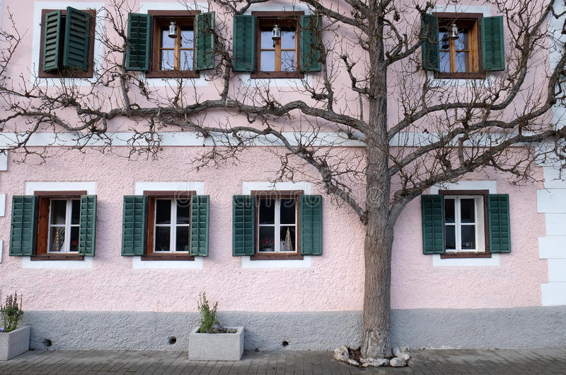 De boom groeit naast het huis royalty-vrije stock fotografie