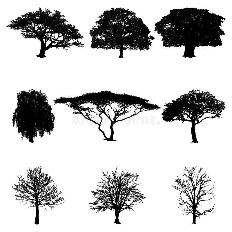 De boom silhouetteert vectorillustratie stock illustratie