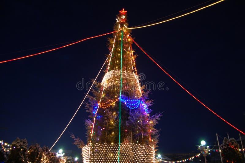 De boom van Christman royalty-vrije stock afbeelding