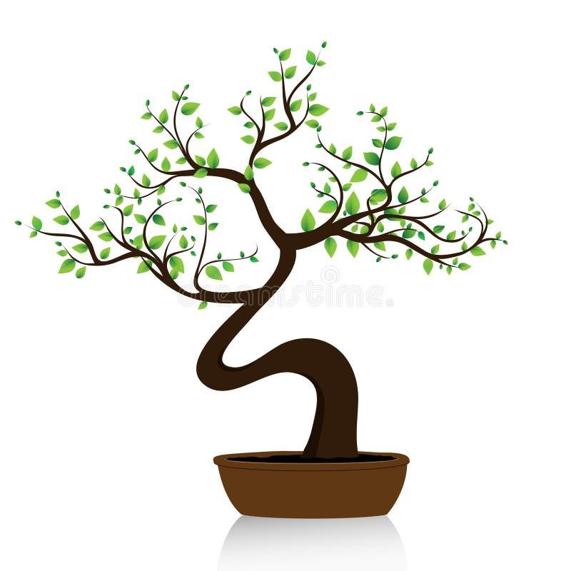 De boom van de bonsai op witte achtergrond vector illustratie