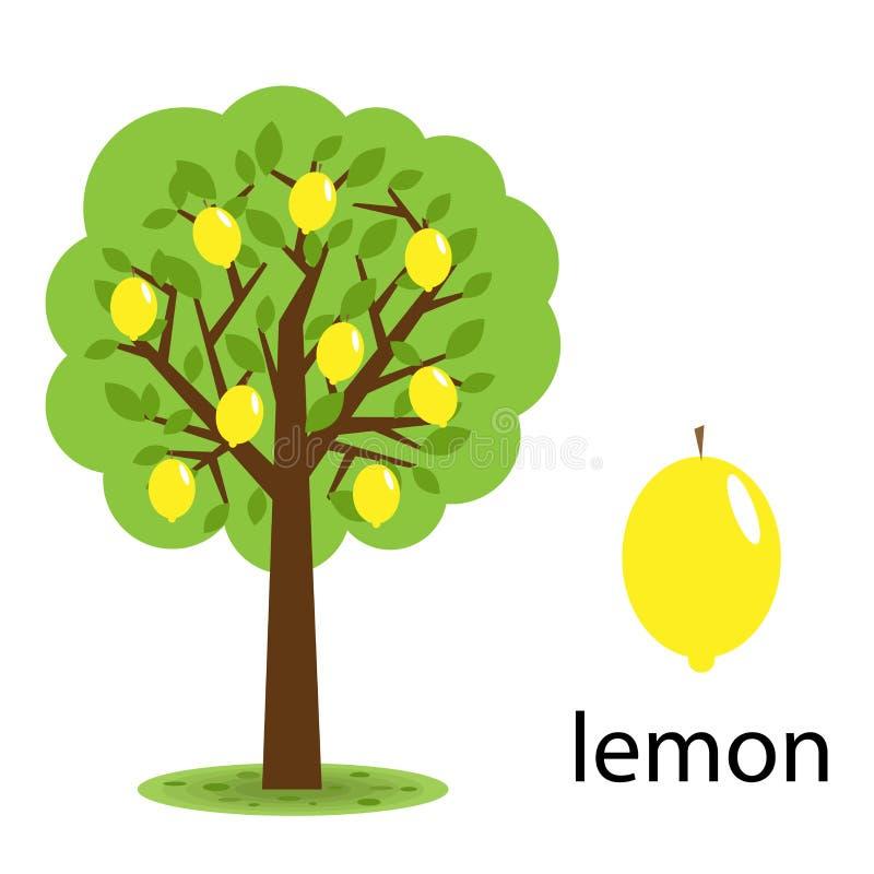 De boom van de citroen vector illustratie