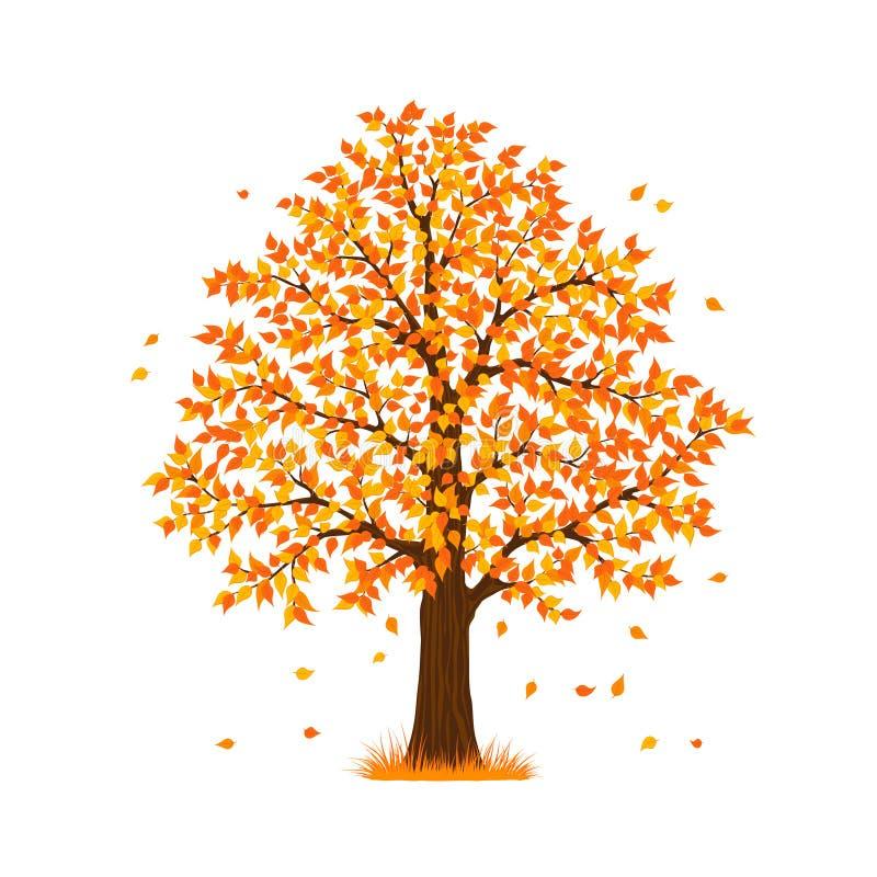 De boom van de de herfstdaling royalty-vrije illustratie