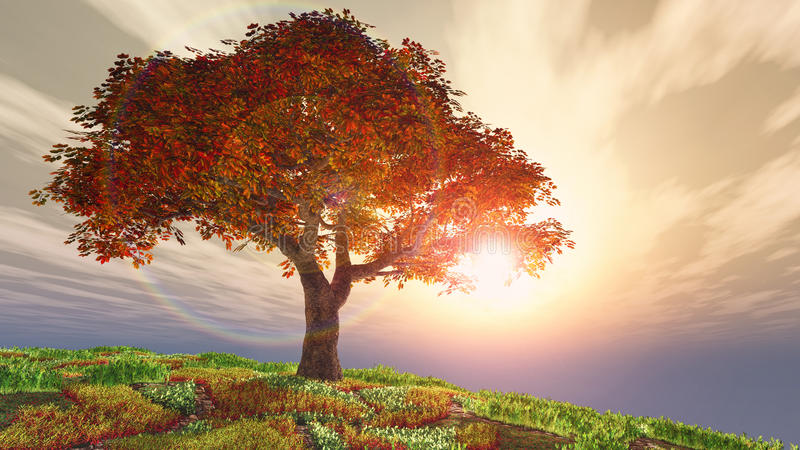 De boom van de de herfstkers op heuvel tegen de zon vector illustratie