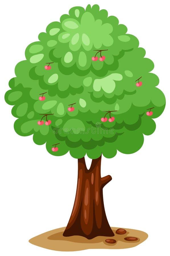 Download De boom van de kers vector illustratie. Illustratie bestaande uit illustratie - 15858637