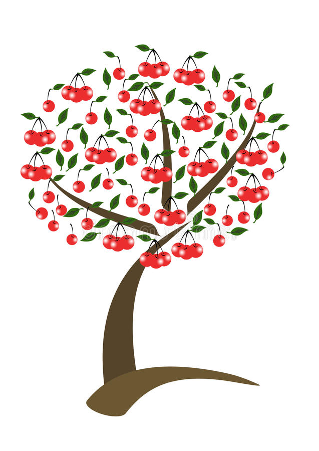 De boom van de kers vector illustratie