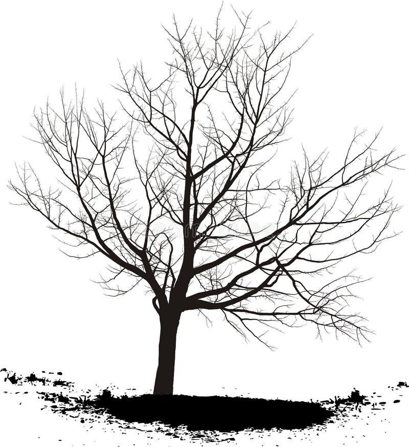 De boom van de kers royalty-vrije illustratie