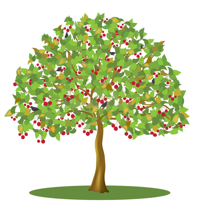 De boom van de kers met bessen en vogels vector illustratie