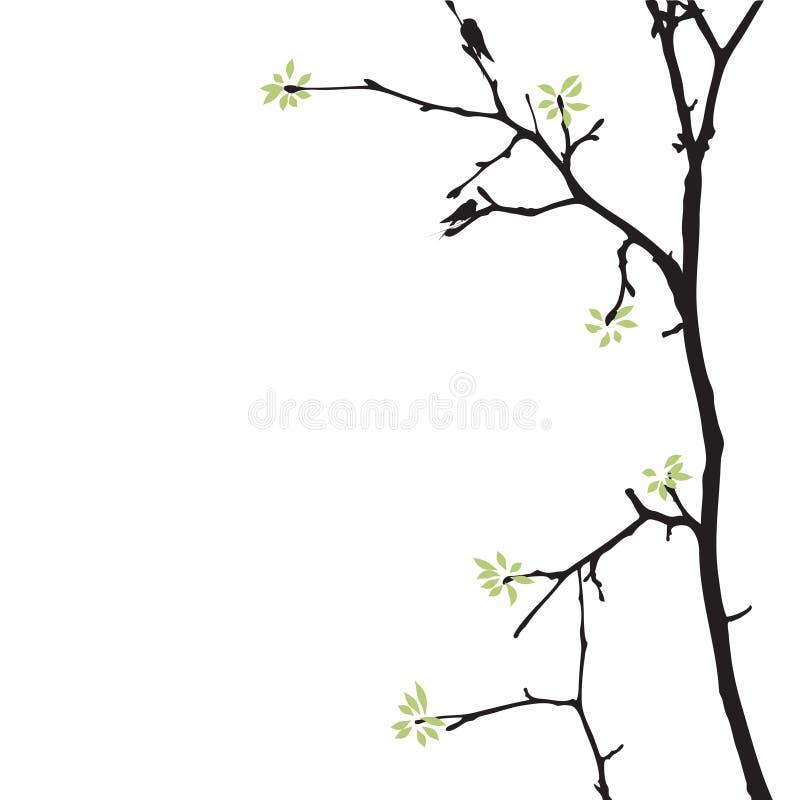 De boom van de lente met vogels vector illustratie