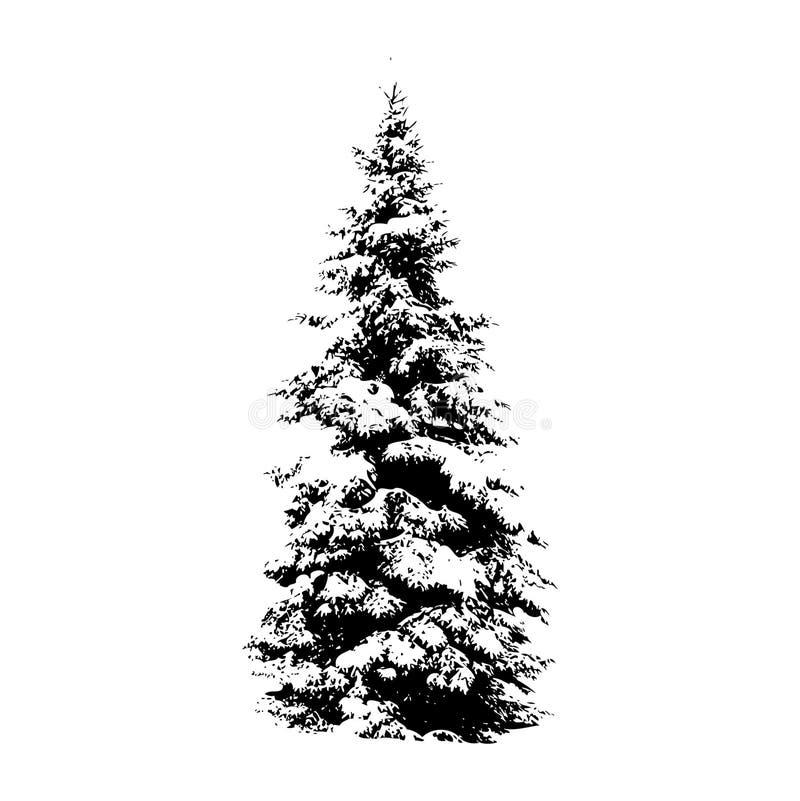 De boom van de pijnboom, vectorillustratie stock illustratie
