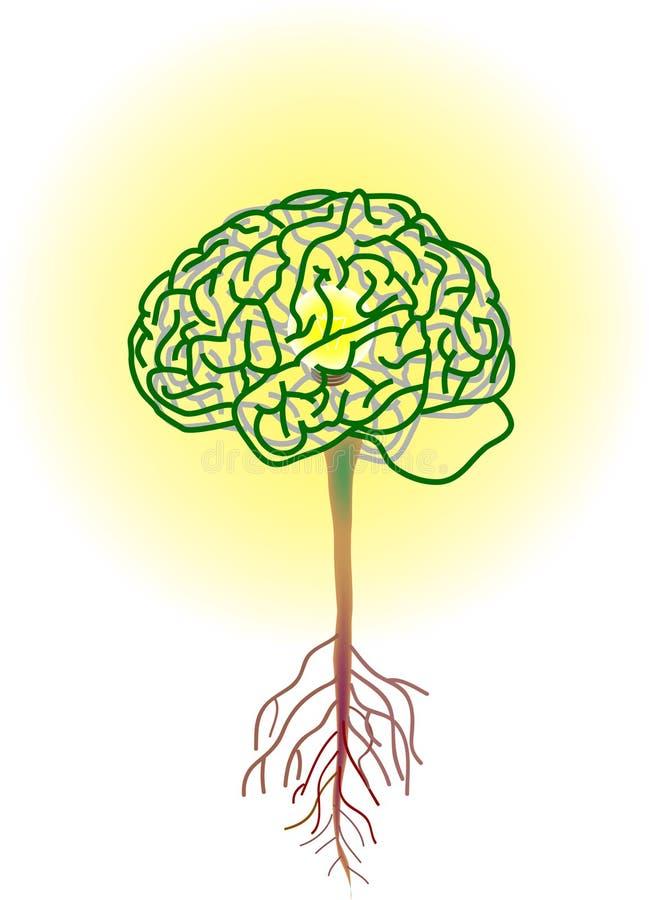 De boom van hersenen royalty-vrije illustratie