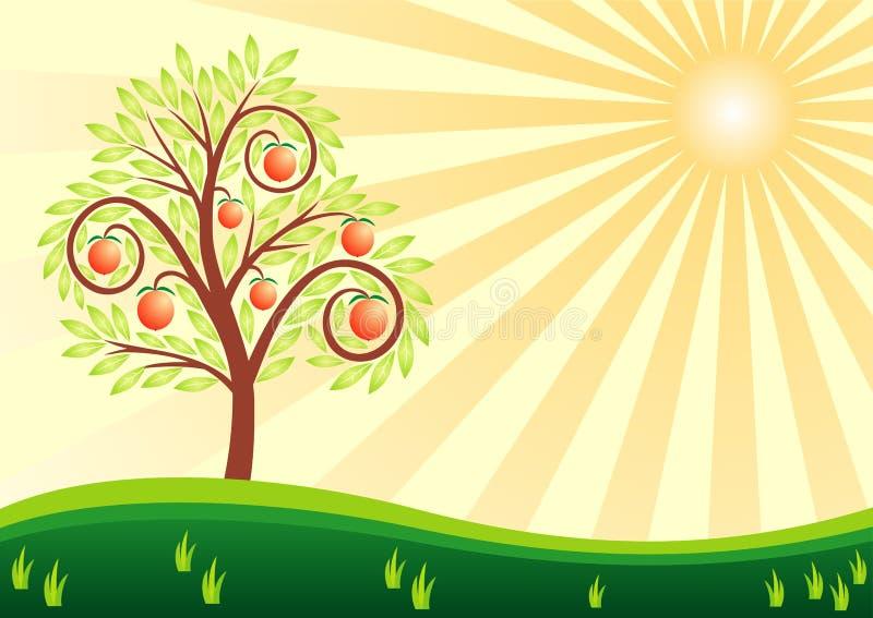 De boom van het fruit en de zon vector illustratie