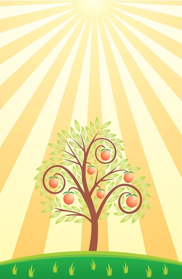 De boom van het fruit en zon vector illustratie