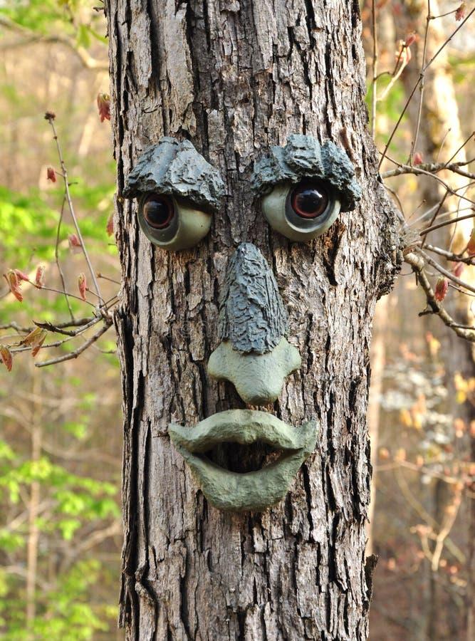 De boom van het gezicht stock afbeeldingen