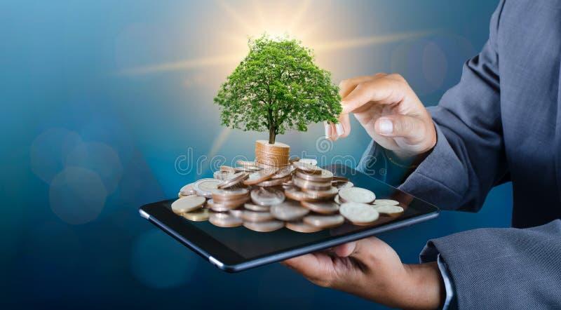 De boom van het handmuntstuk de boom groeit op de stapel Het Geld van de besparing voor de Toekomst Investeringsideeën en Bedrijf royalty-vrije stock afbeelding